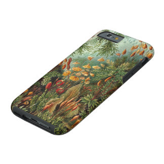 Vintage Moss Plants by Ernst Haeckel, Muscinae Tough iPhone 6 Case