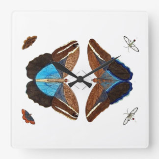 Vintage Moth Collection Wall Clock