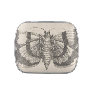 Vintage Moth Lepidoptera Nature Collection Box Jelly Belly Candy Tin