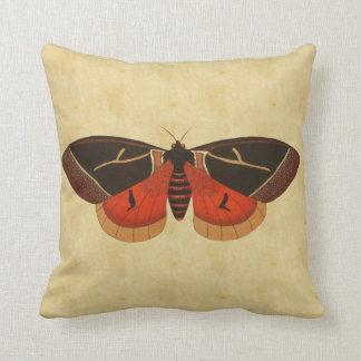 Vintage Moth Throw Pillow