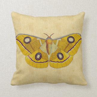 Vintage Moth Throw Pillows
