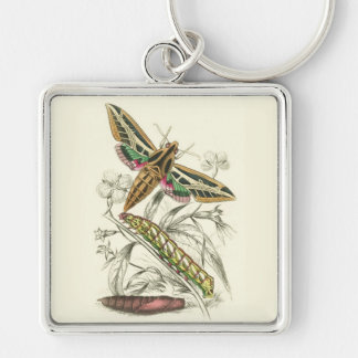 Vintage Moth Progression Keychain