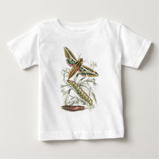 Vintage Moth Progression Tshirts