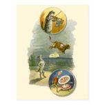 Vintage Mother Goose Nursery Rhyme Poem Post Cards