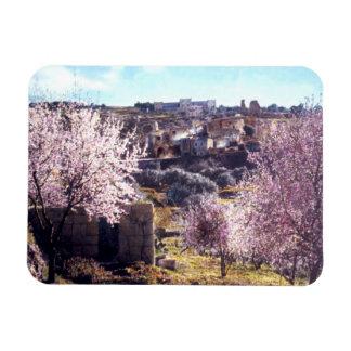 Vintage Mount Of Olives Jerusalem Israel 1950 - 77 Magnet