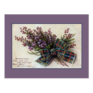 Vintage Mountain Heath Scottish clan ribbon, poem Postcard