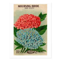 vintage mourning bridge flower seedpacket postcard