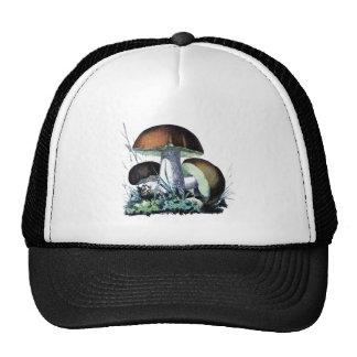vintage mushroom art trucker hat