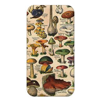Vintage Mushroom Guide 4  iPhone 4/4S Covers