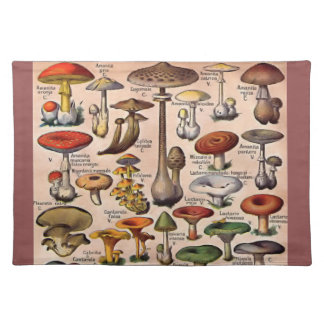 Vintage Mushroom Guide Cloth Placemat