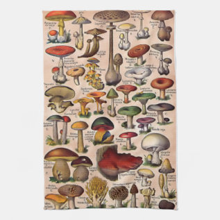 Vintage Mushroom Guide Hand Towel at Zazzle