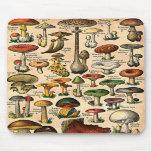 Vintage Mushroom Guide Mouse Pad