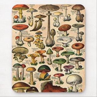 Vintage Mushroom Guide mousepad