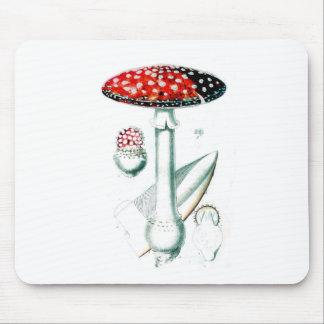Vintage Mushroom Illustration Mouse Pad