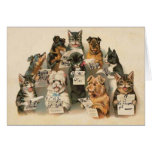 Vintage Musical Cats Dogs Everyday Greeting Card