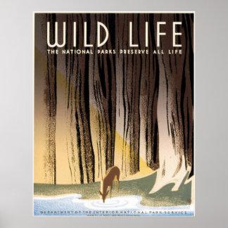 Vintage National Parks Wildlife WPA Poster
