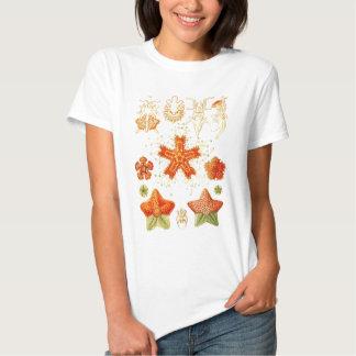Vintage Naturalist Image of Starfish (Asteroidea) T-shirt
