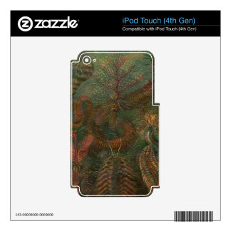Vintage Nature Scene Decals For iPod Touch 4G