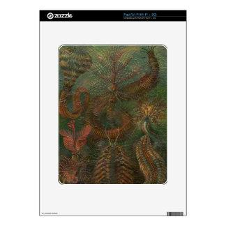 Vintage Nature Scene iPad Skin