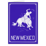 Vintage New Mexico Greeting Cards