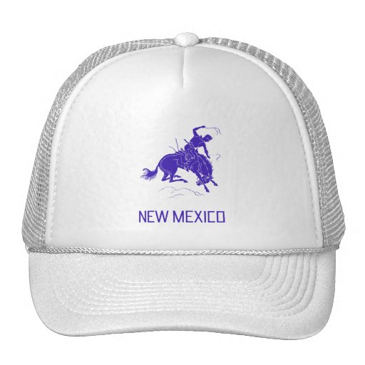 Vintage New Mexico Hats