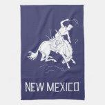 Vintage New Mexico Kitchen Towel