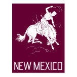 Vintage New Mexico Postcard