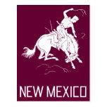 Vintage New México Tarjeta Postal
