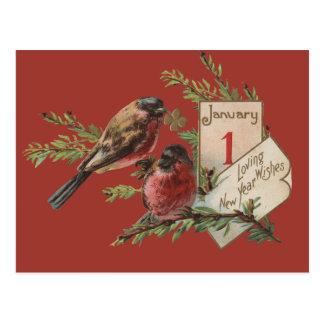 Vintage New Years Birds Postcard