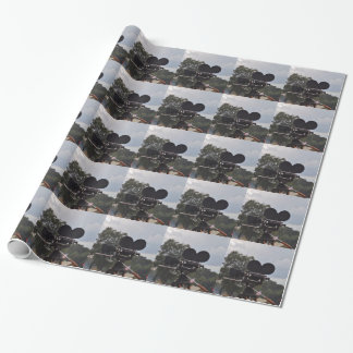 Vintage Newsreel Camera Wrapping Paper