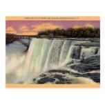 Vintage Niagara Falls Postcard