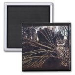 Vintage Night Owl 2 Inch Square Magnet