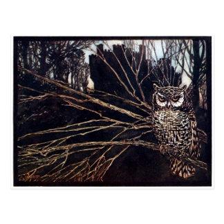 Vintage Night Owl Rackham Postcard