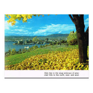 Vintage Norway,  First sight of Oslo Postcard