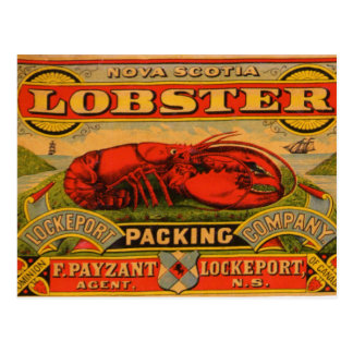 Vintage Nova Scotia Lobster Postcard