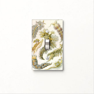 Vintage Nudibranchia, Sea Slugs by Ernst Haeckel Light Switch Cover
