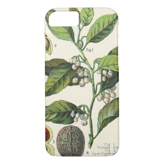 Vintage Nutmeg Plant Fruit Seeds, Food Herbs Spice iPhone 8/7 Case