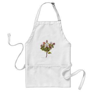 Vintage NZ Flowers - Meterosideros Albiflora Adult Apron