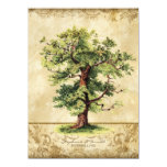 Vintage Oak Tree of Life Swirl Etchings Parchment 5.5x7.5 Paper Invitation Card
