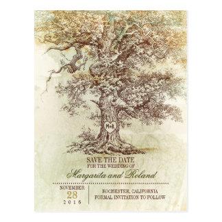 vintage oak tree save the date postcards