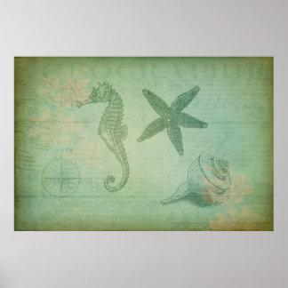 Vintage Ocean Animals and Seashells Poster