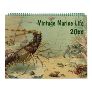 Vintage Ocean Marine Life Animal and Sea Creatures Calendar