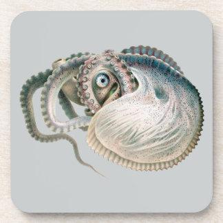Vintage Octopus Argonaut, Marine Life Animals Beverage Coasters