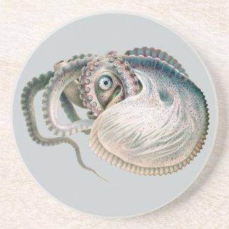 Vintage Octopus Argonaut, Marine Life Animals Coasters