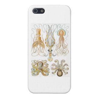 Vintage Octopus Illustration Case For iPhone SE/5/5s
