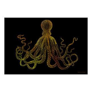 Vintage Octopus In Black And Gold Poster