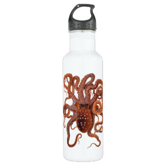 Vintage Octopus Macropus, Marine Aquatic Animals Water Bottle