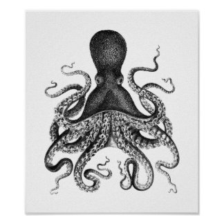 Vintage Octopus Poster Posters
