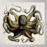 Vintage Octopus Print Poster