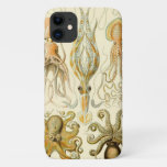 Vintage Octopus Squid Gamochonia by Ernst Haeckel iPhone 11 Case